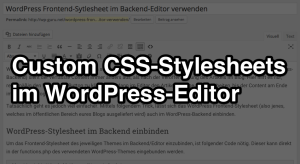 Custom CSS im WordPress-Editor
