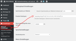 WordPress Multisite erlaubte Dateitypen